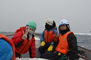 On a voyage in the Antarctic Ocean