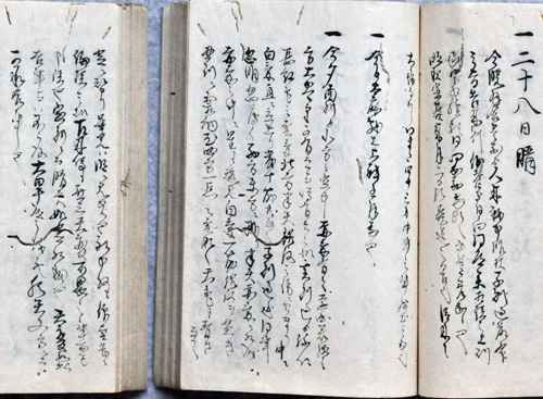 Figure 2. The diary of the Higashi-Hakura family
